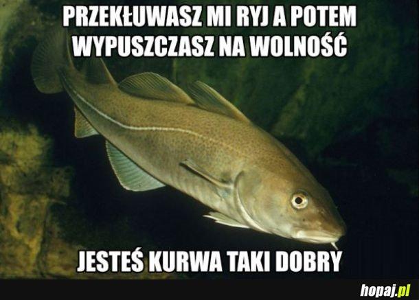 Smutna ryba