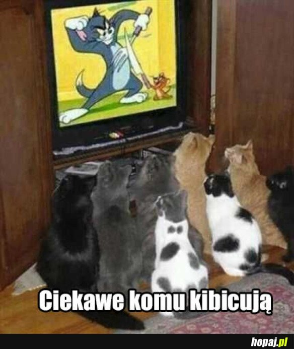 NO CIEKAWE
