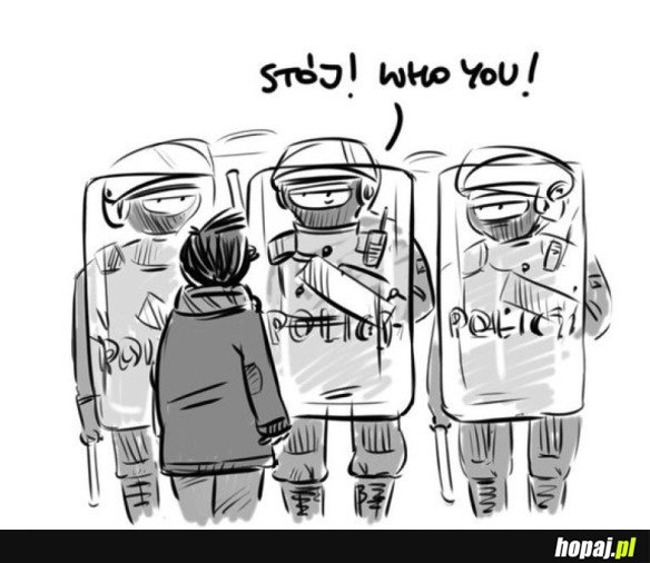 POLICJA,STÓJ!