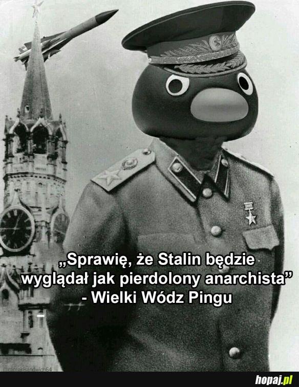 Wielki wódz Pingu