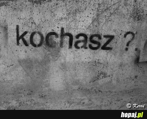 Kochasz?