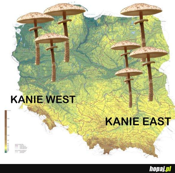 KANIE