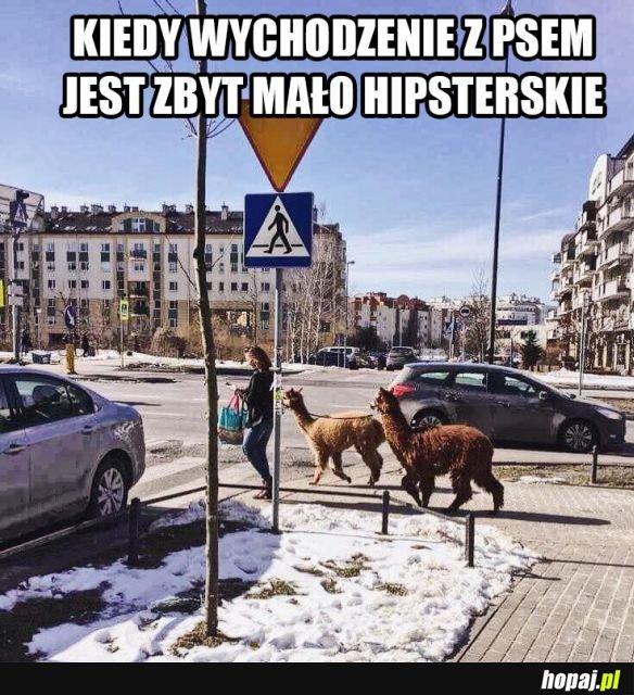 Wyższy level hipsterstwa