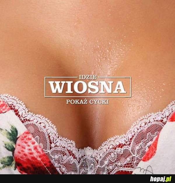фото женская грудь большая