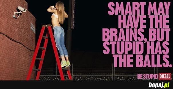 Stupid has the balls!