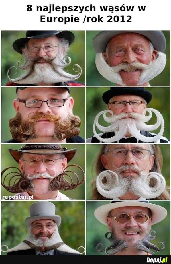 8 najlepszych wąsów