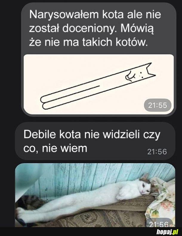 Rysowanie kota