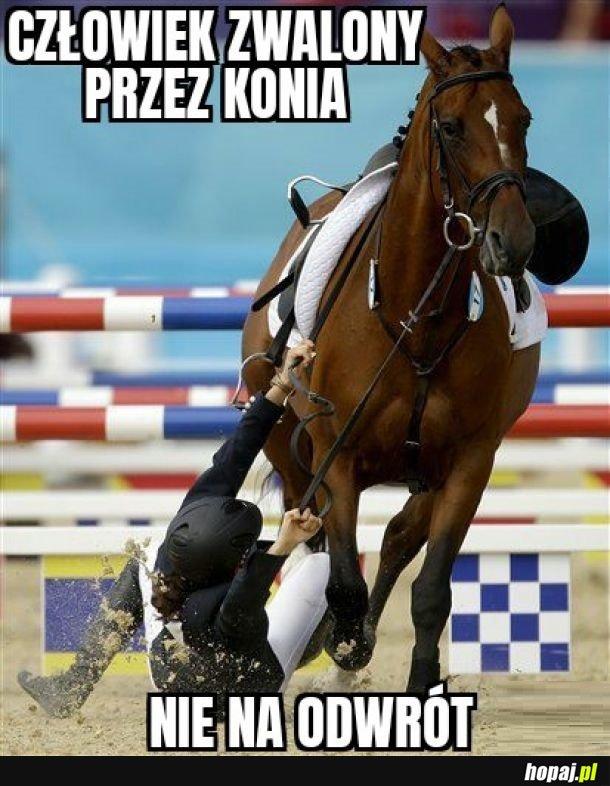 Pan koń