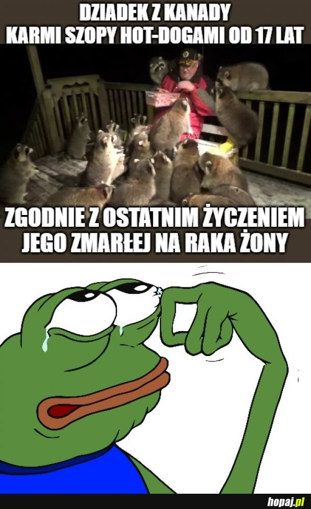 Pepe dont cry