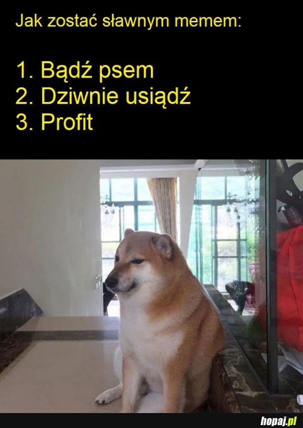 Internetowy poradnik