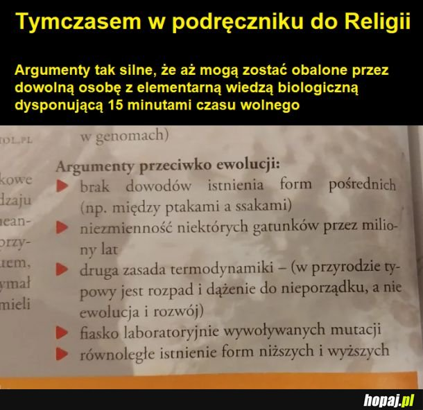 Porażka polskiego systemu edukacji