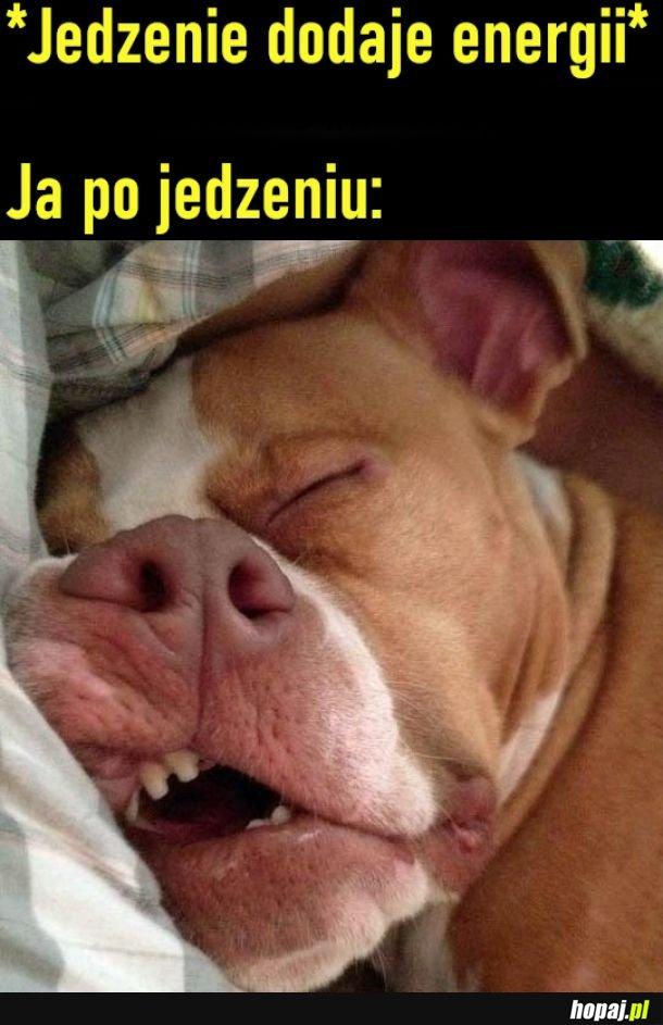 Po jedzeniu mam mnóstwo energii... na spanko :)