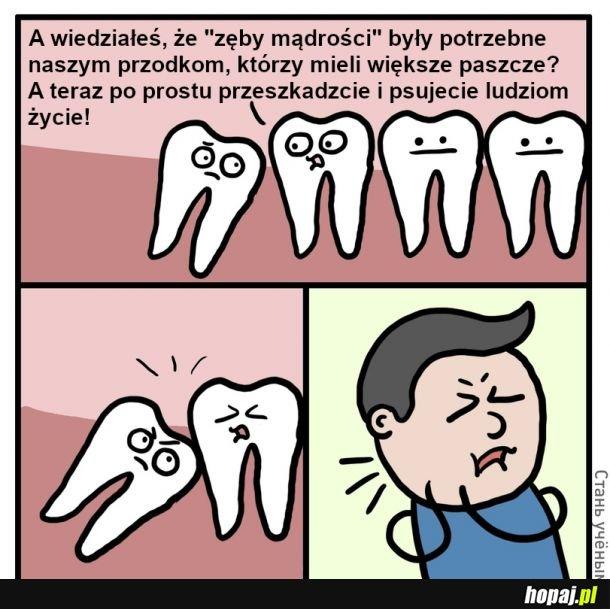 Głupie zęby