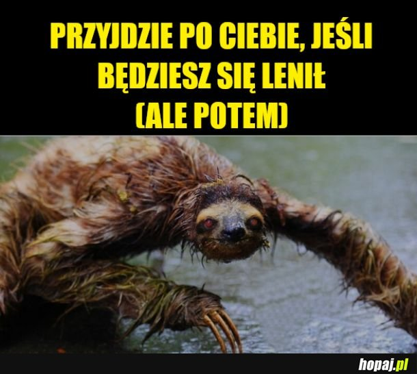Leń Lenistwa - nie chce mu się przyjść