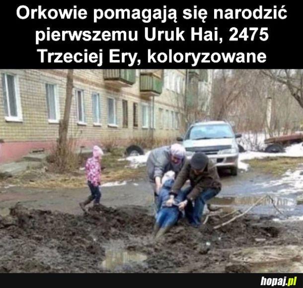 Orkowie