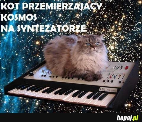 Kot przemirzający kosmos na syntezatorze