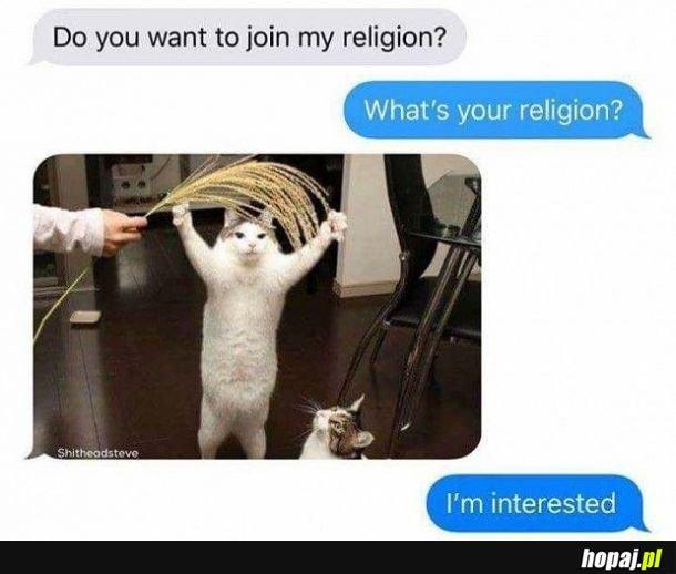 Ja też jestem zainteresowany