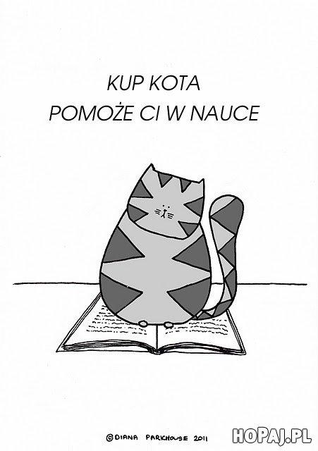 Kup kota, pomoże Ci w nauce