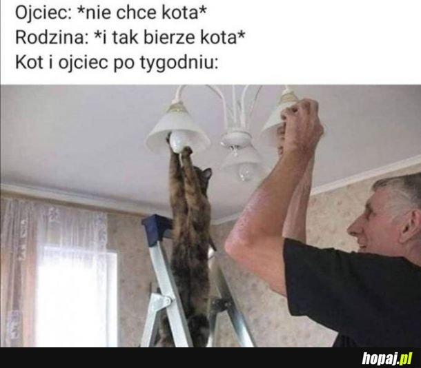 Stary i kot