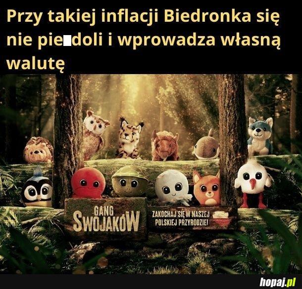 Typowe polskie zwierzęta: ryś, żubr, rekin i torbiel ( nie wiem, co to czerwone jest)
