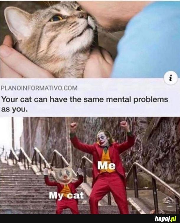 Psychiczne koty