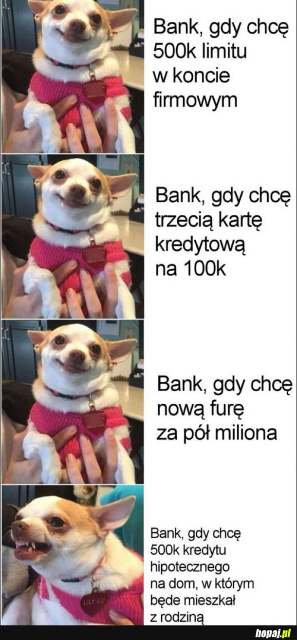 Banki takie są