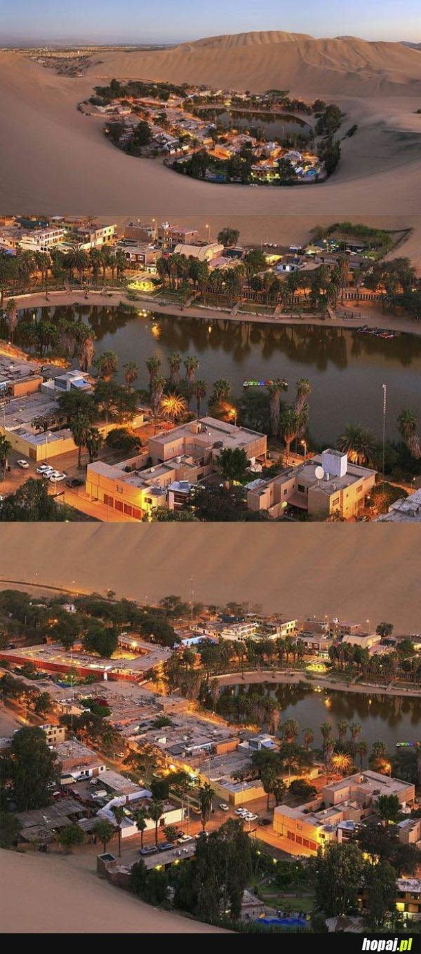 Miasto Oaza