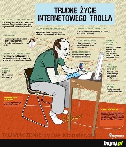 Trudne życie internetowego trolla