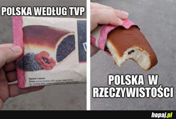 Polska w TVP