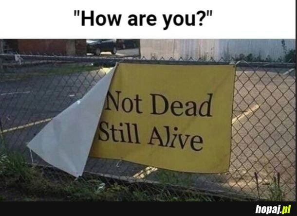 Jak się masz?