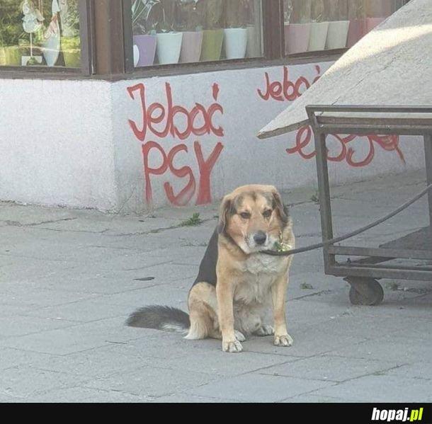Smutny obrazek :(