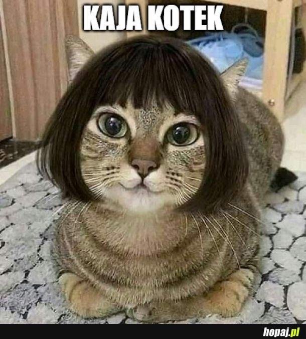 Kaja Kotek