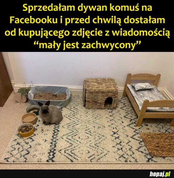 Dywanik
