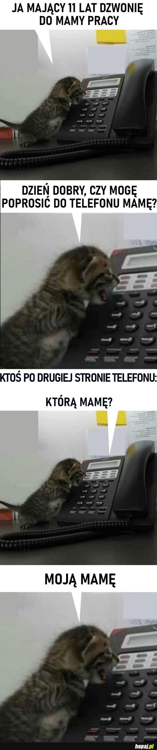 Halo, poproszę mamę do telefonu
