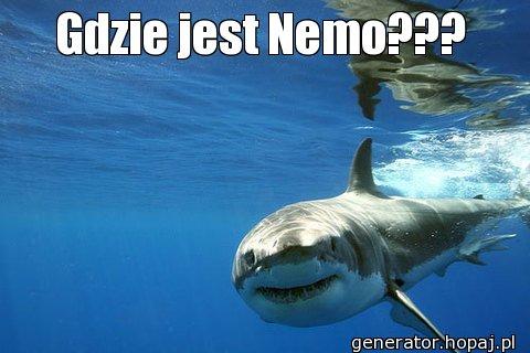 Gdzie jest Nemo???