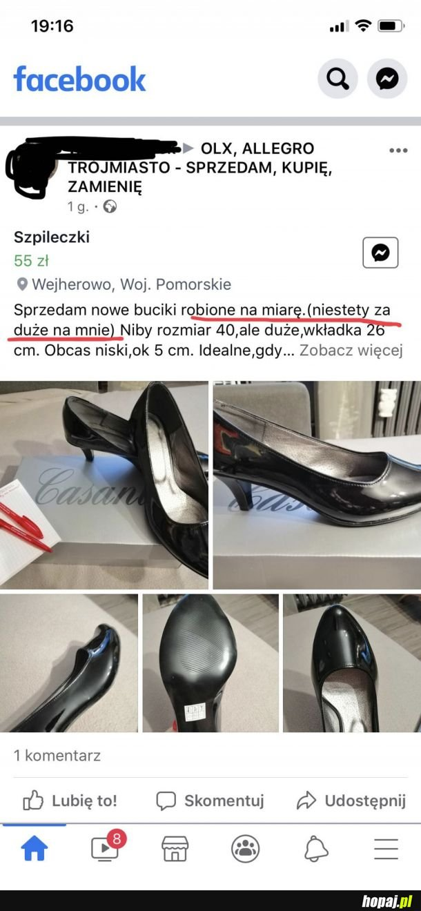 Robil pan Wiesio XD