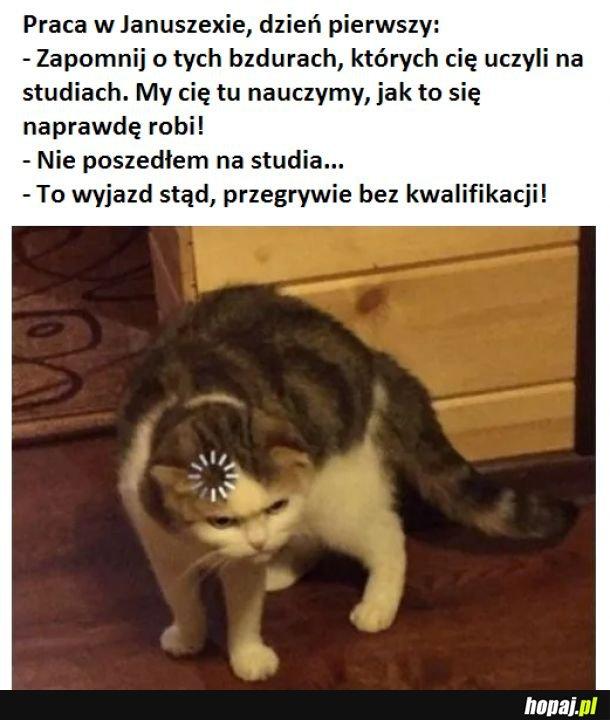 Jak być Januszem, lekcja 19 :)