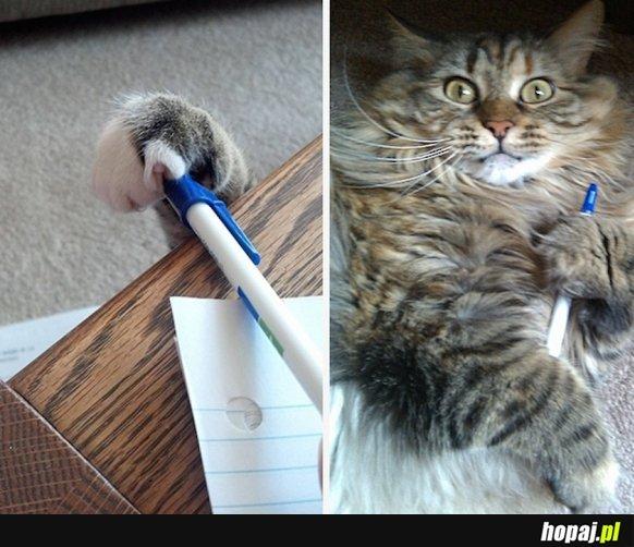 Nie odrobiłem pracy domowej, kot zabrał mi długopis