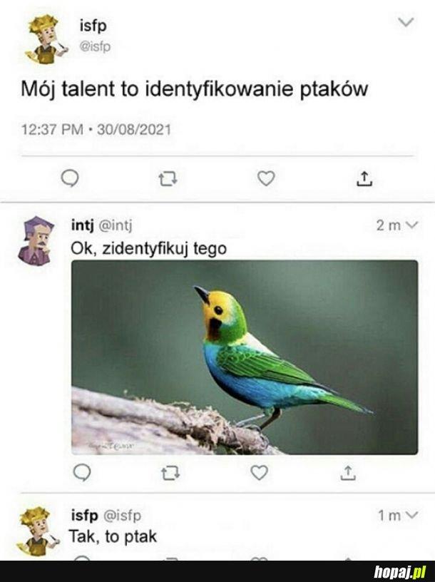 Niezwykły talent