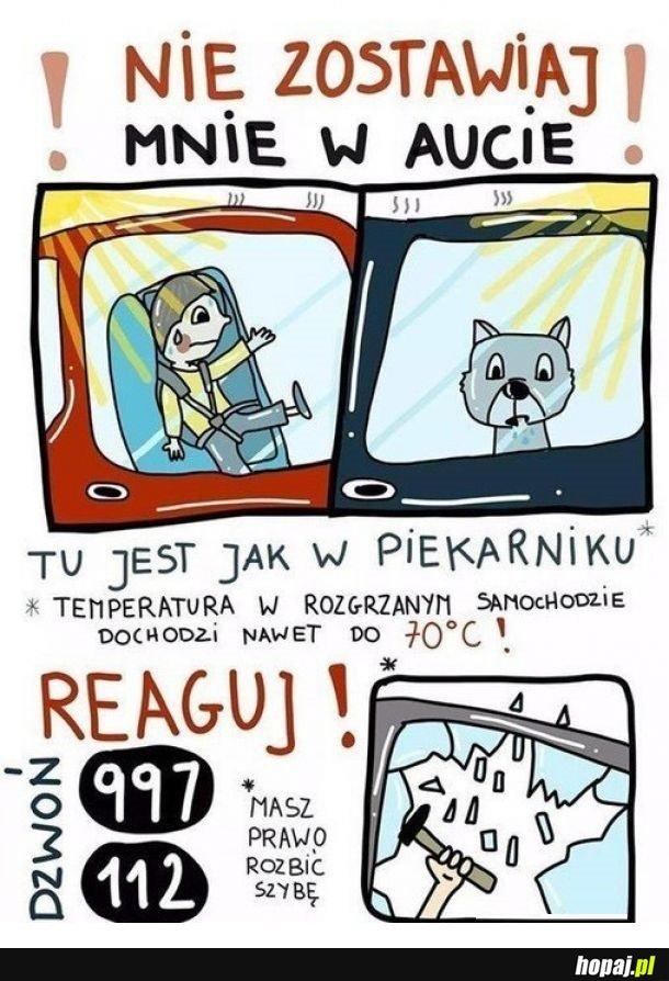 Reaguj!