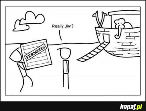 Termity, poważnie Jim?