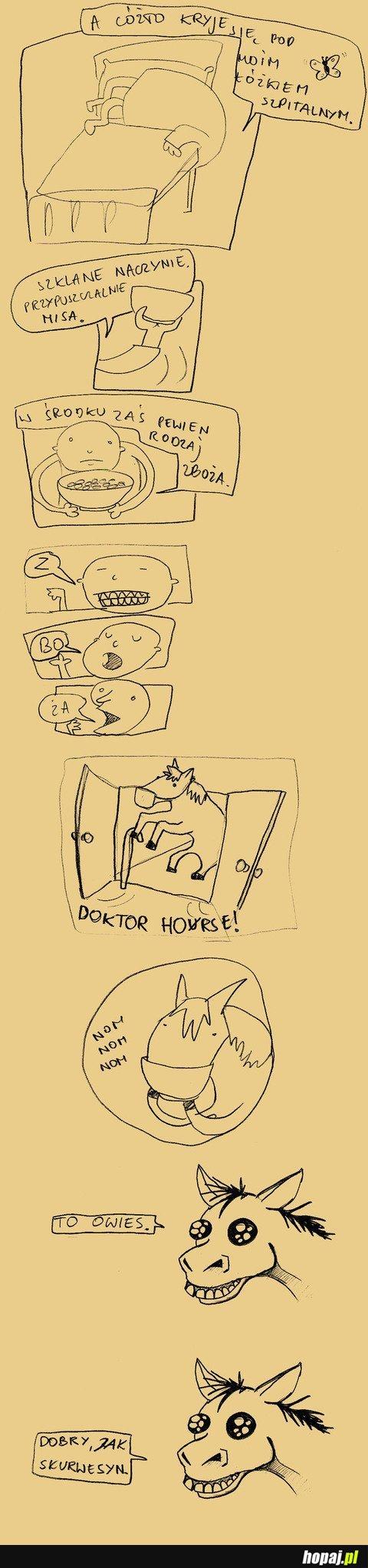 Doktor Horse