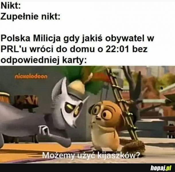 Polska Milicja