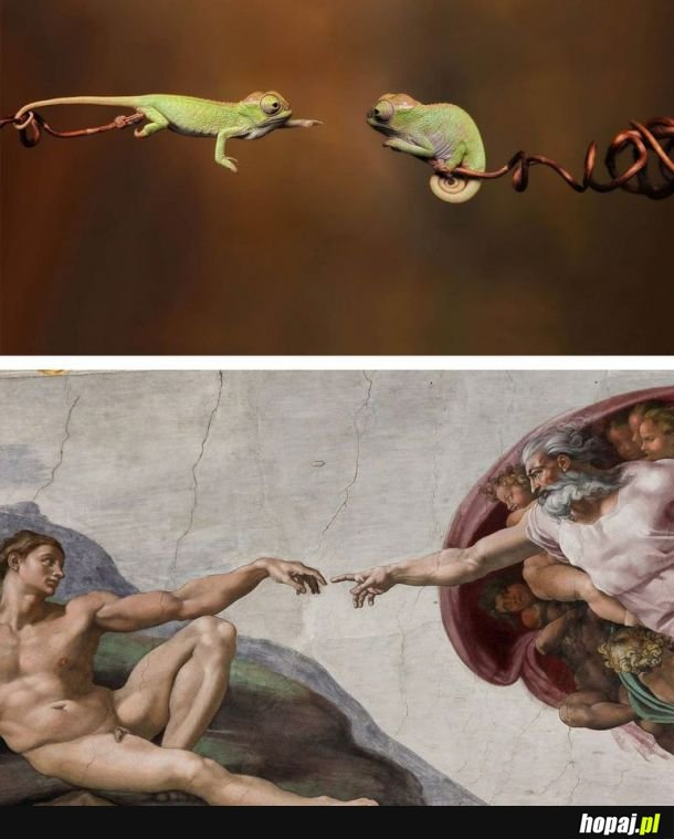 Natura i sztuka