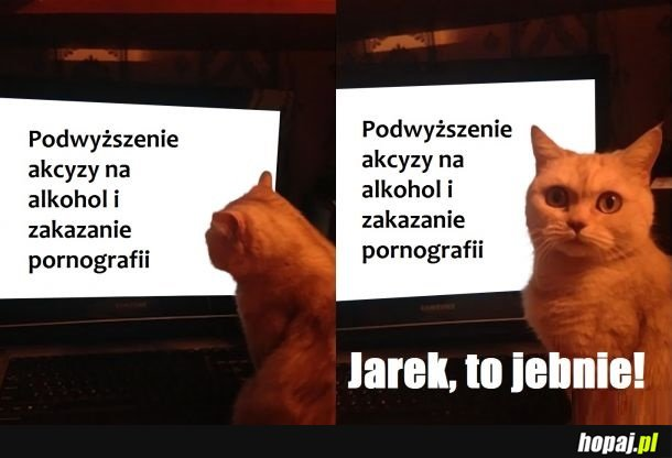 Krótka analiza sytuacji społeczno-gospodarczej Polski
