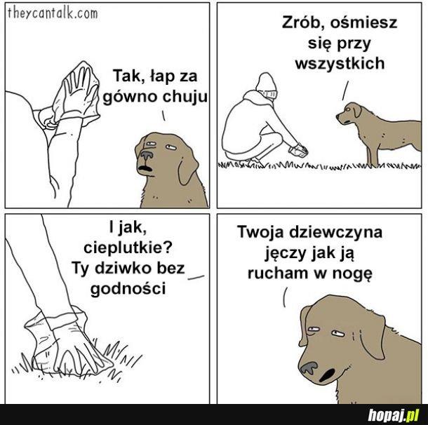 Sprzątanie po psie