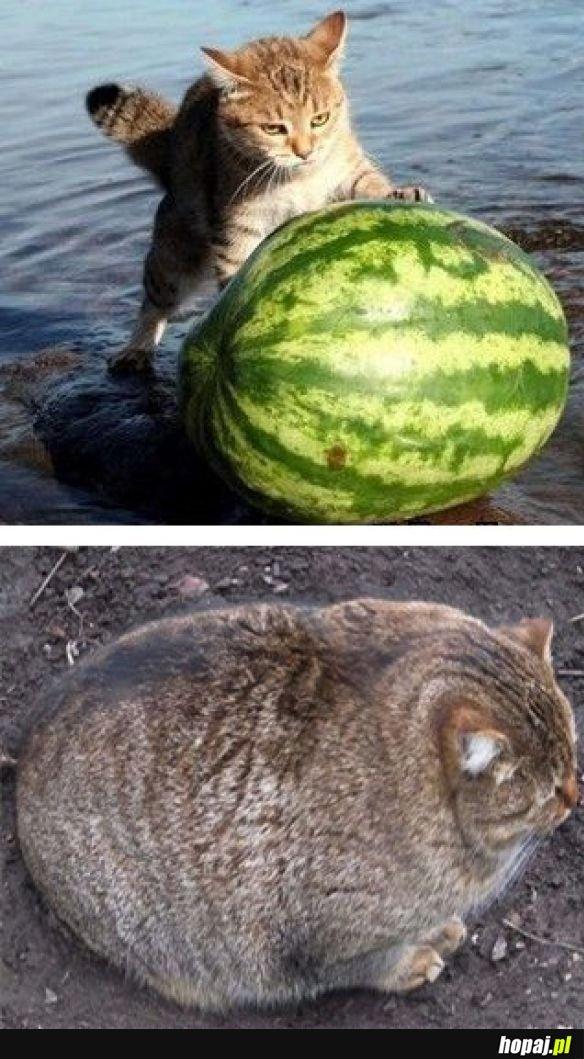 Tak się kończy jedzenie arbuza