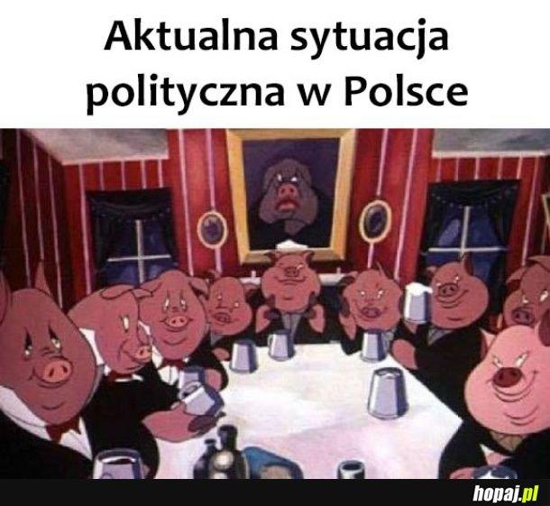 Sytuacja polityczna