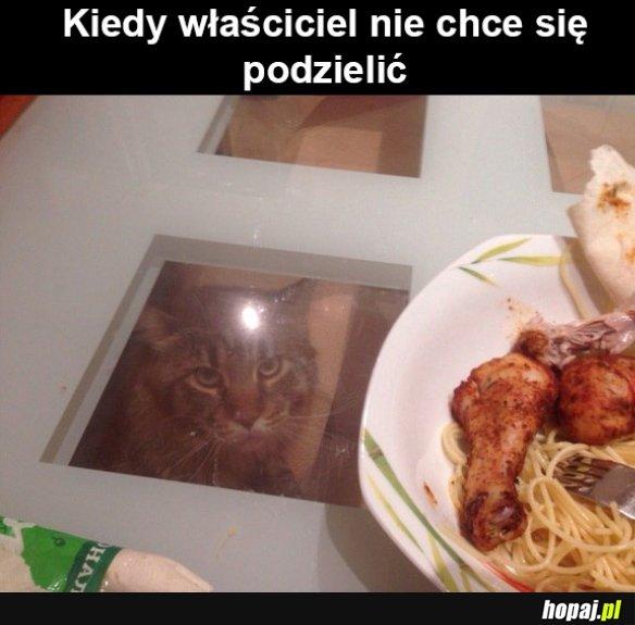 Koteł...