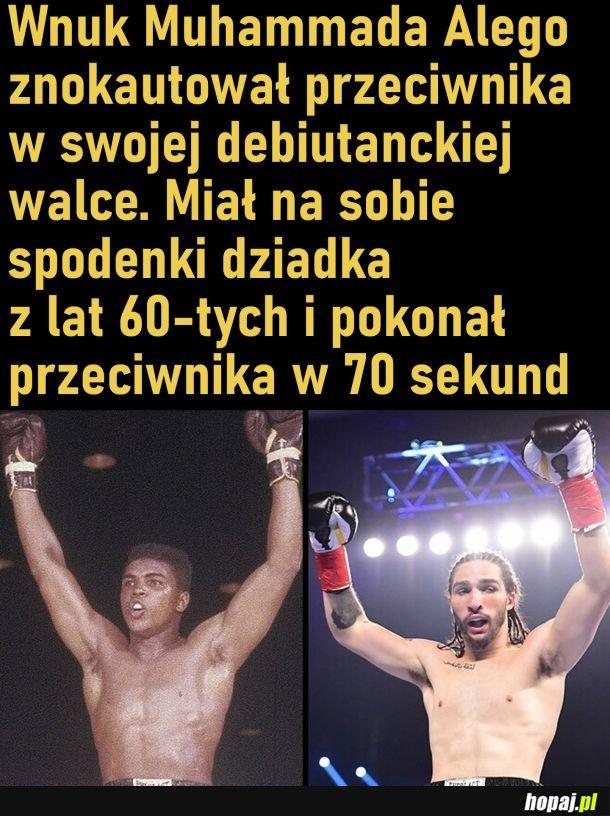 Debiut Nico Alego Walsha
